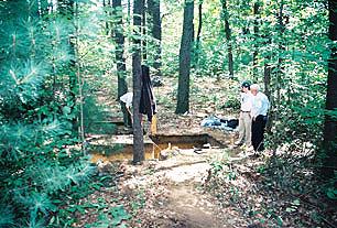 Pine Hawk Site